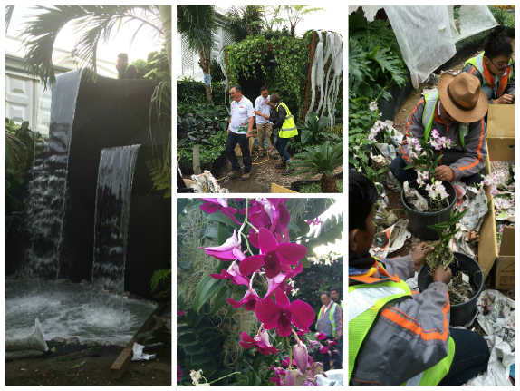 The waterfall before planting; the international team; the Orchids