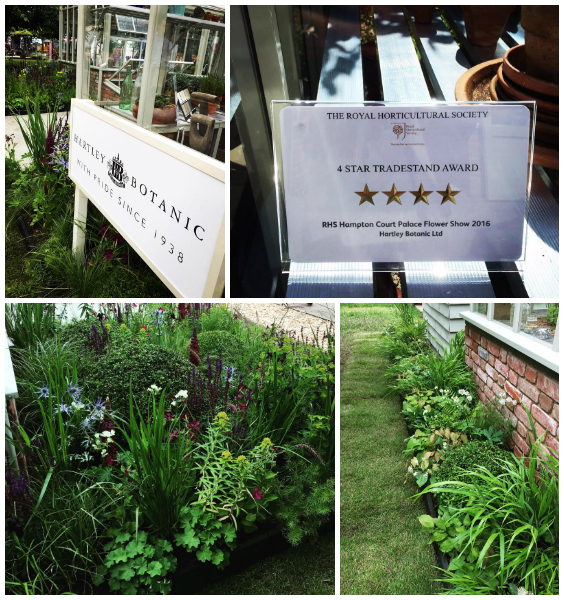 The Hartley Botanic stand receiving top accolade 4 Star Award, designed by Rhiannon Williams