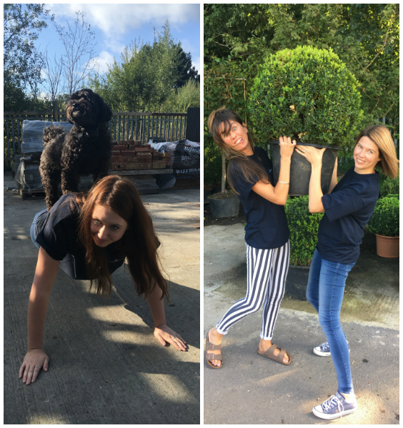 LEFT: Office dog Marg putting Rhiannon through her paces | RIGHT: Kate & Catherine doing a spot of refiling!